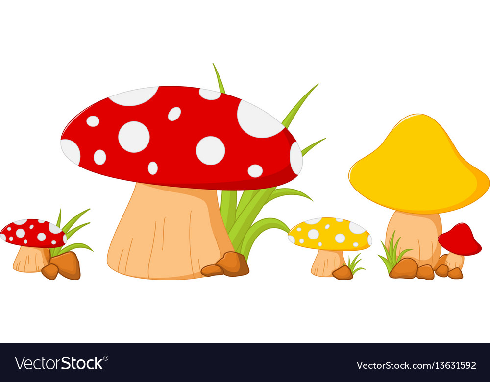 Red mushroom with grass vector image