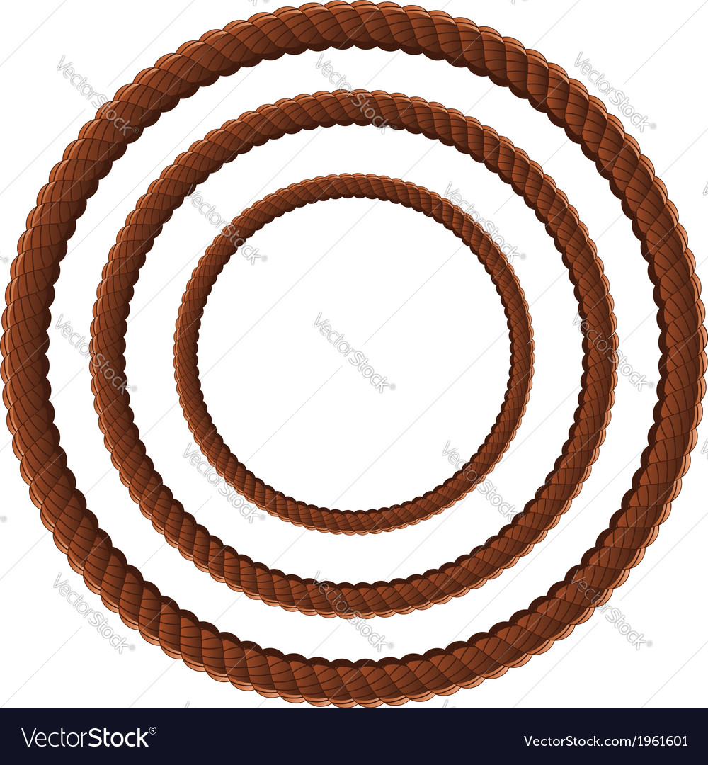 Brown rope in three sizes2 vector image