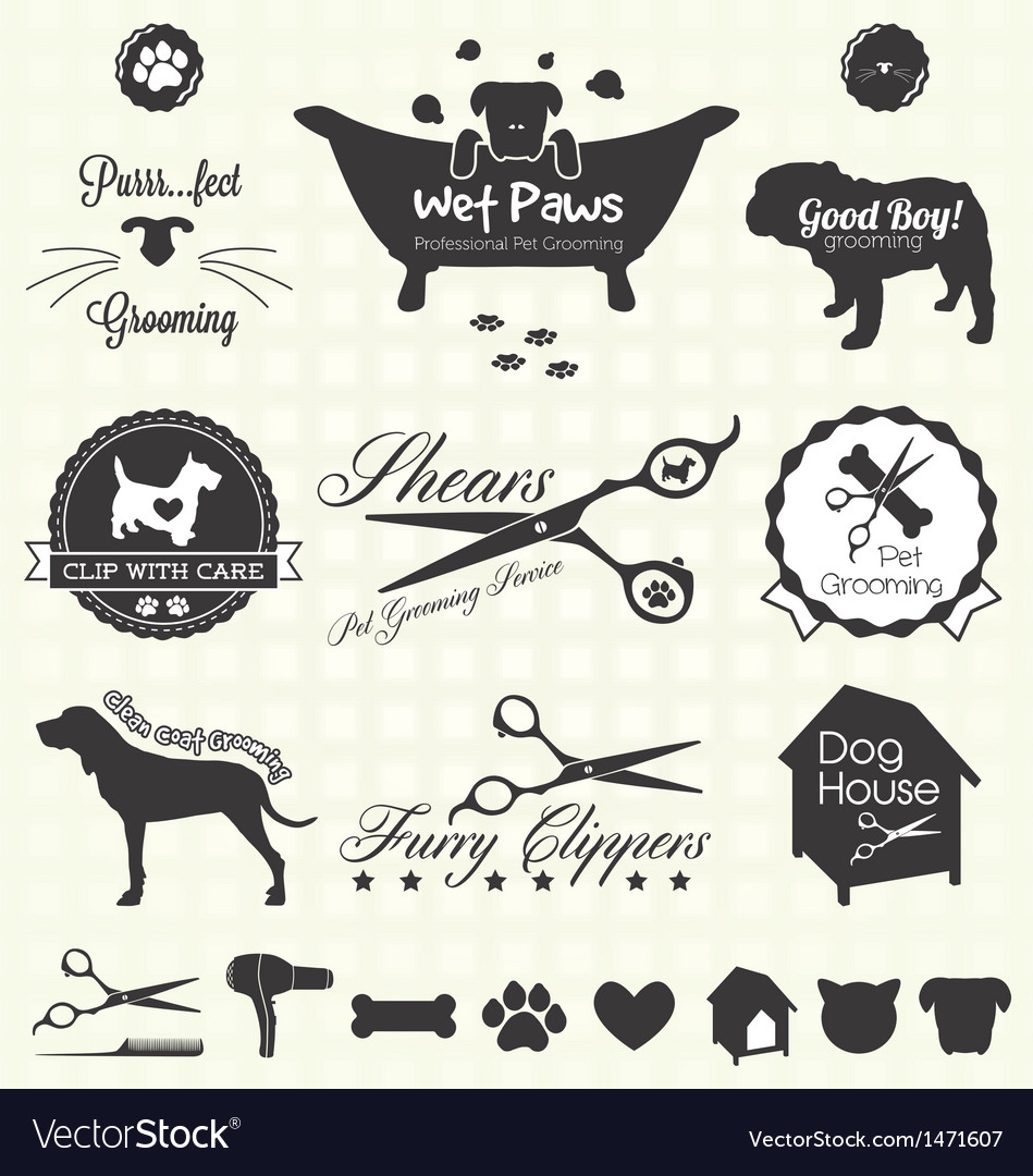 Pet Grooming Labels vector image