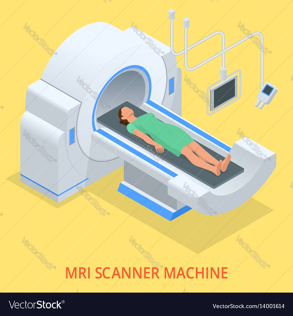 Magnetic resonance imaging mri of the body flat vector image