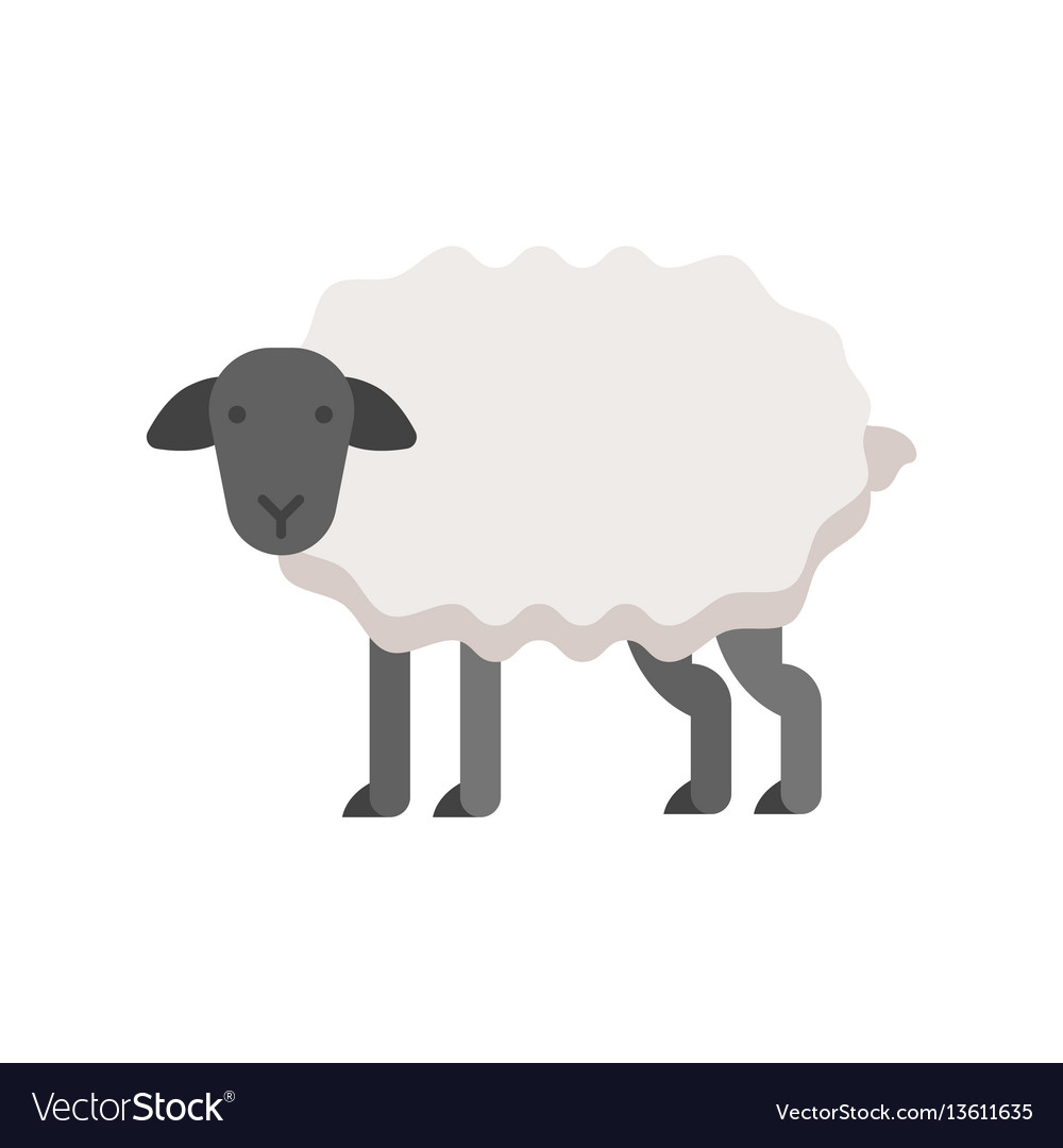Flat style of sheep vector image