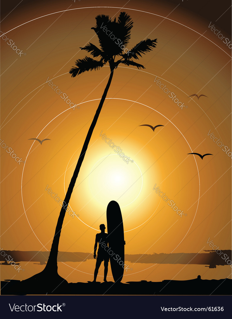 Summer vacations surfing Vector Image