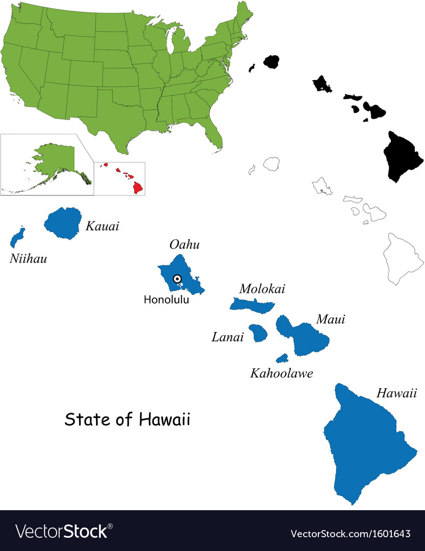 Hawaii map vector image