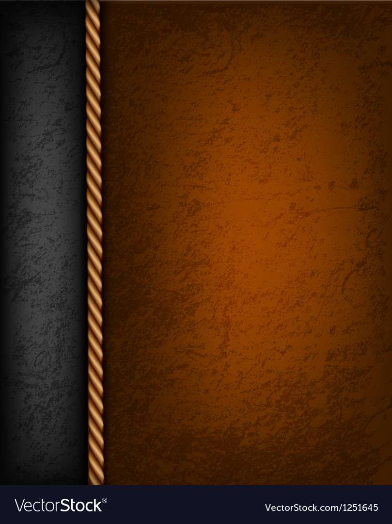 Vintage background with brown and black leather Vector Image