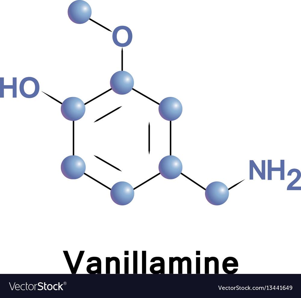 Vanillamine molecular structure vector image