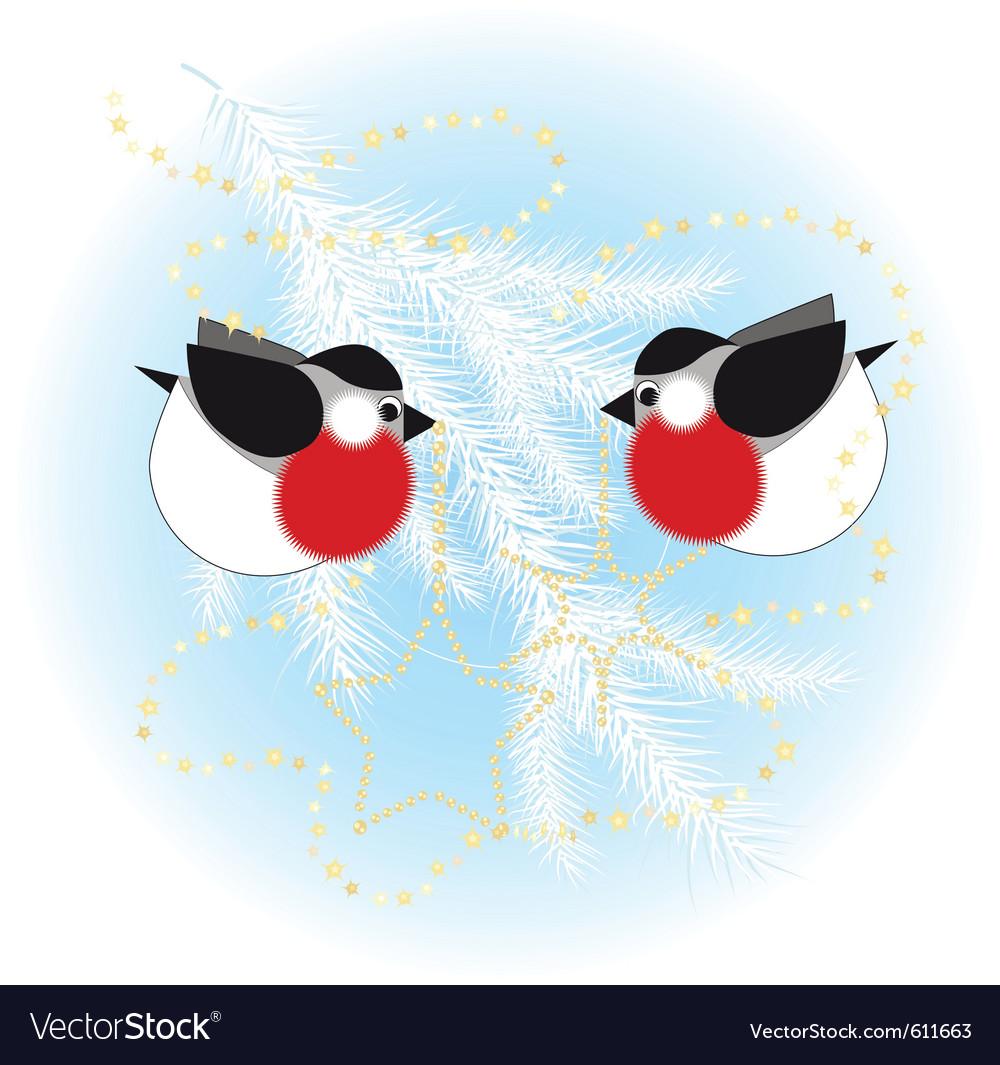 Bullfinch christmas tree vector image
