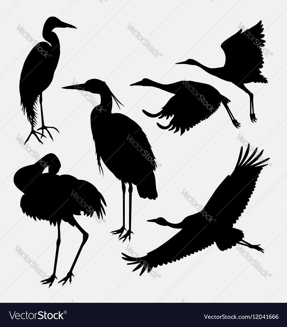Stork heron egret and crane silhouette vector image