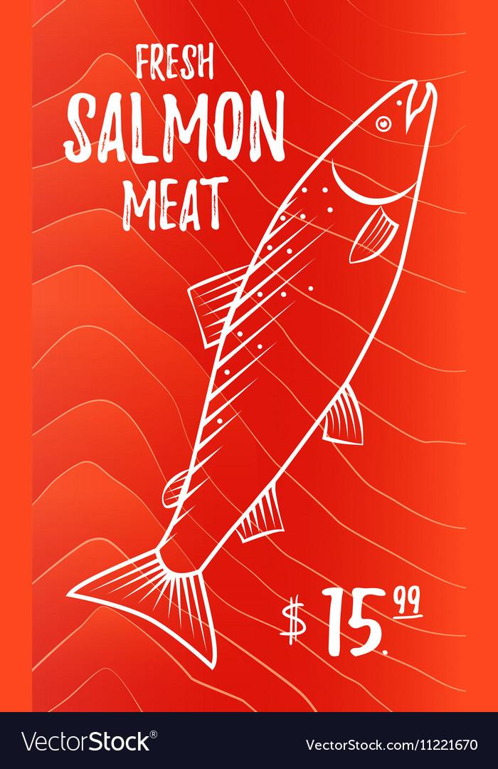 Fresh salmon meat vector image