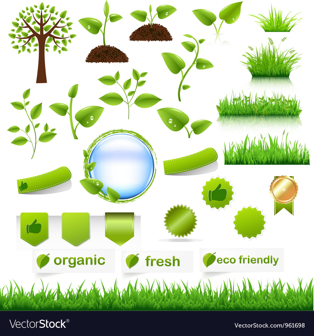 Nature objects vector image