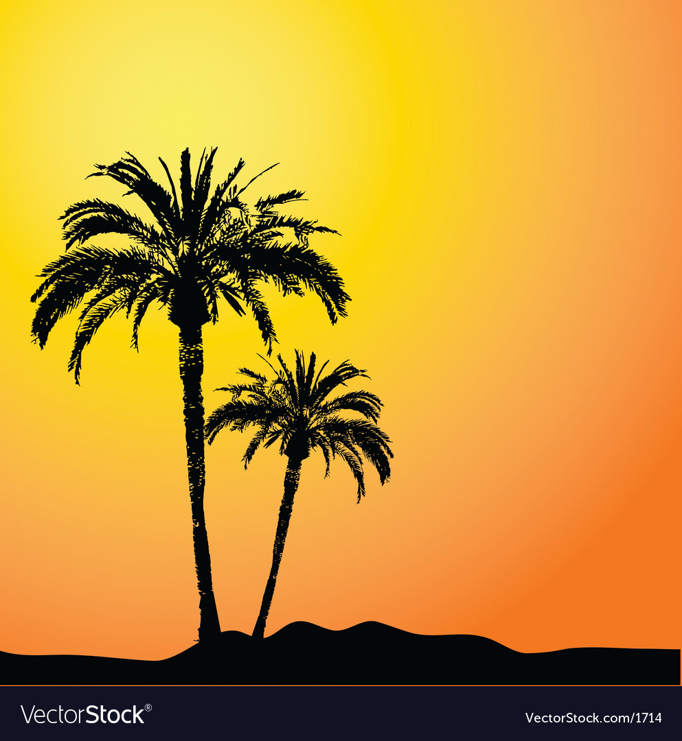 Palm trees design vector image