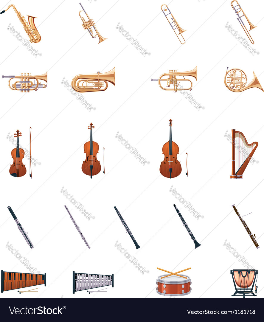 Instruments of the Orchestra vector image