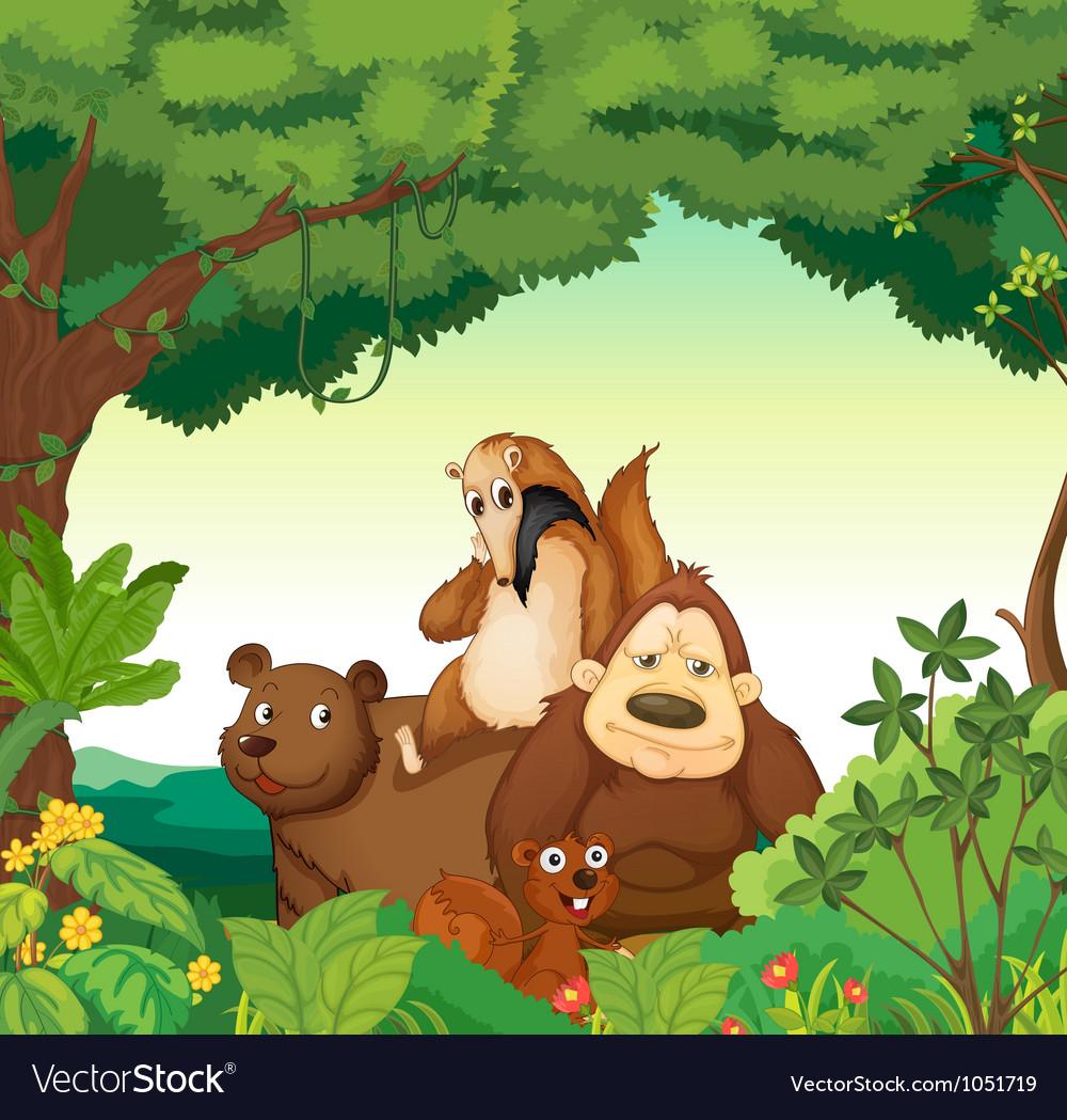 various animals royalty free vector image vectorstock