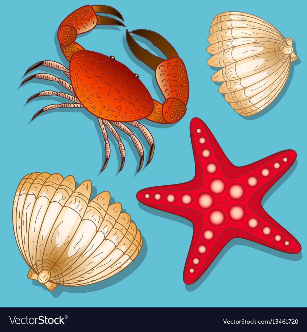Set of marine inhabitants crab starfish and vector image