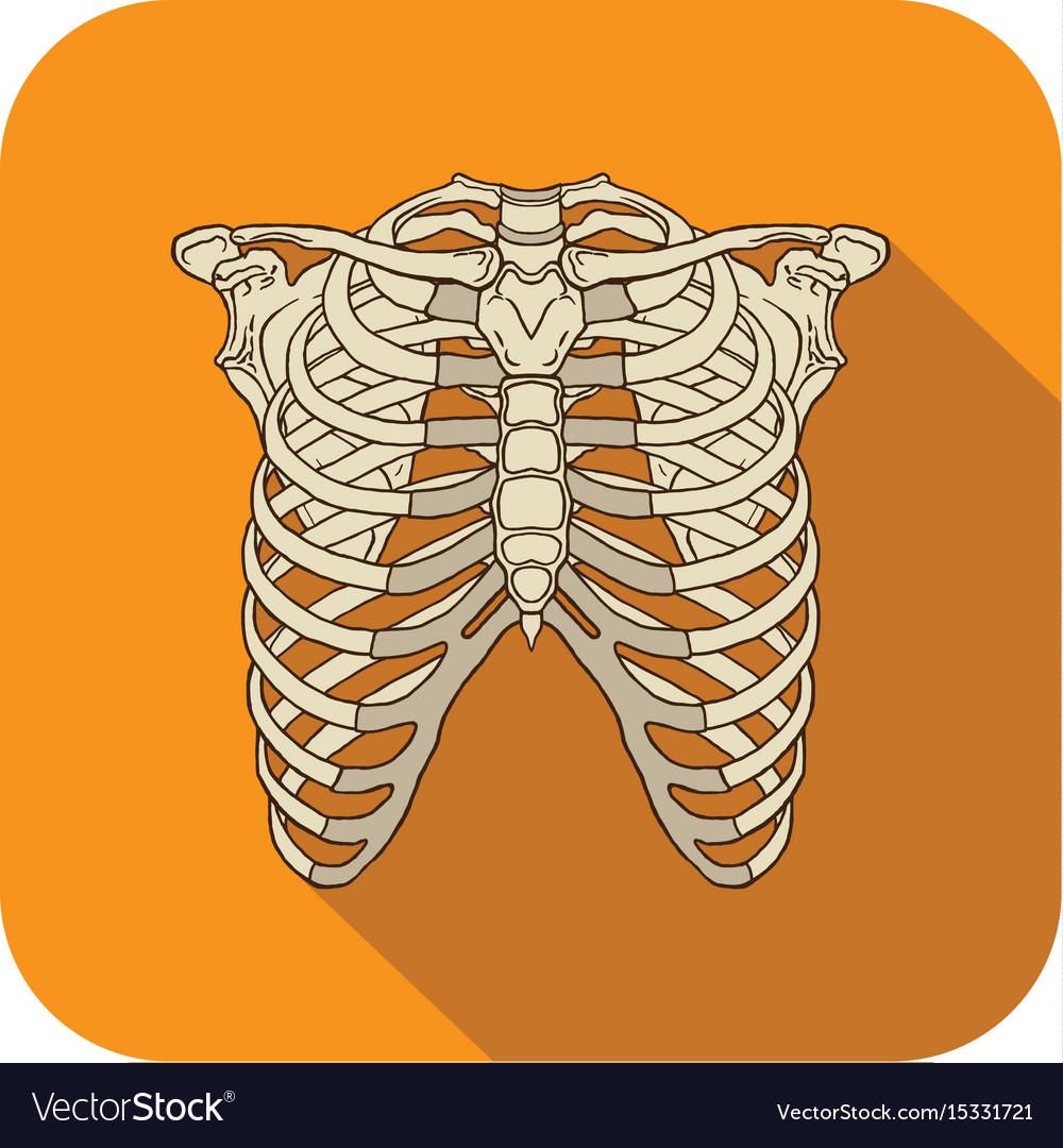 Ribs flat icon orange vector image