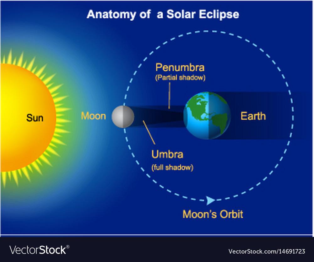 Solar eclipse diagram royalty free vector image solar eclipse diagram vector image pooptronica
