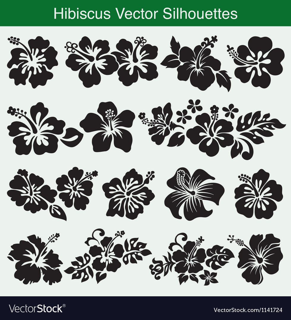 Hibiscus Silhouettes collection vector image
