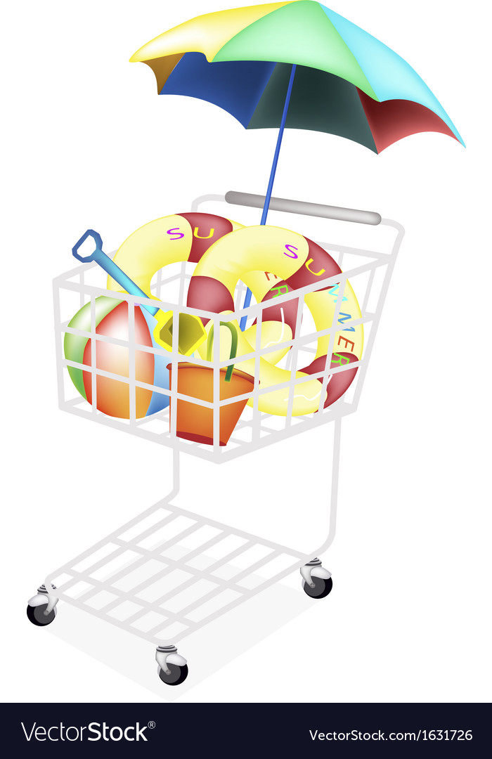 Beach Items for Summertime in Shopping Cart vector image