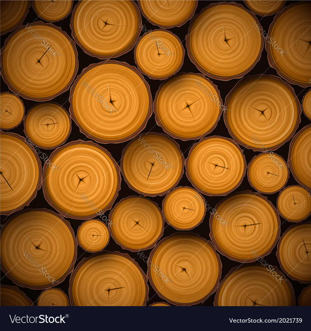 Pile of wood logs vector image