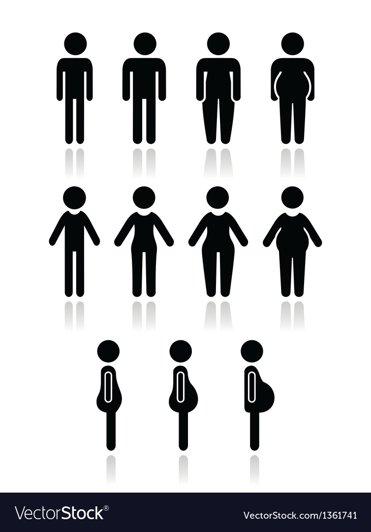 Man and women body type icons - slim fat obese vector image