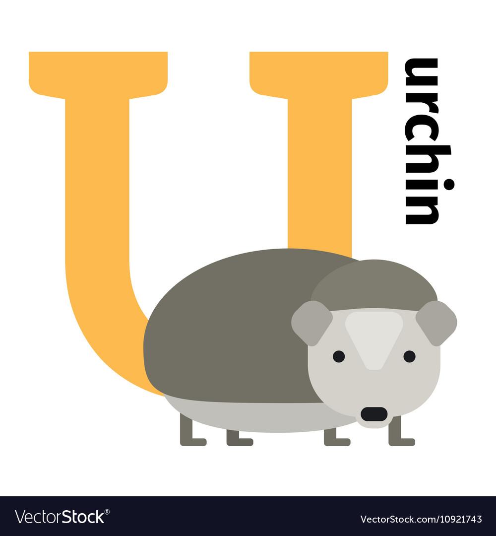 English animals zoo alphabet letter U vector image
