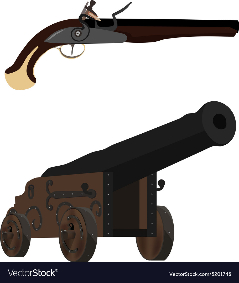 Musket and cannon vector image