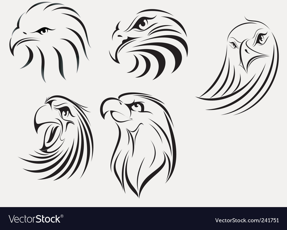 Eagle set vector image