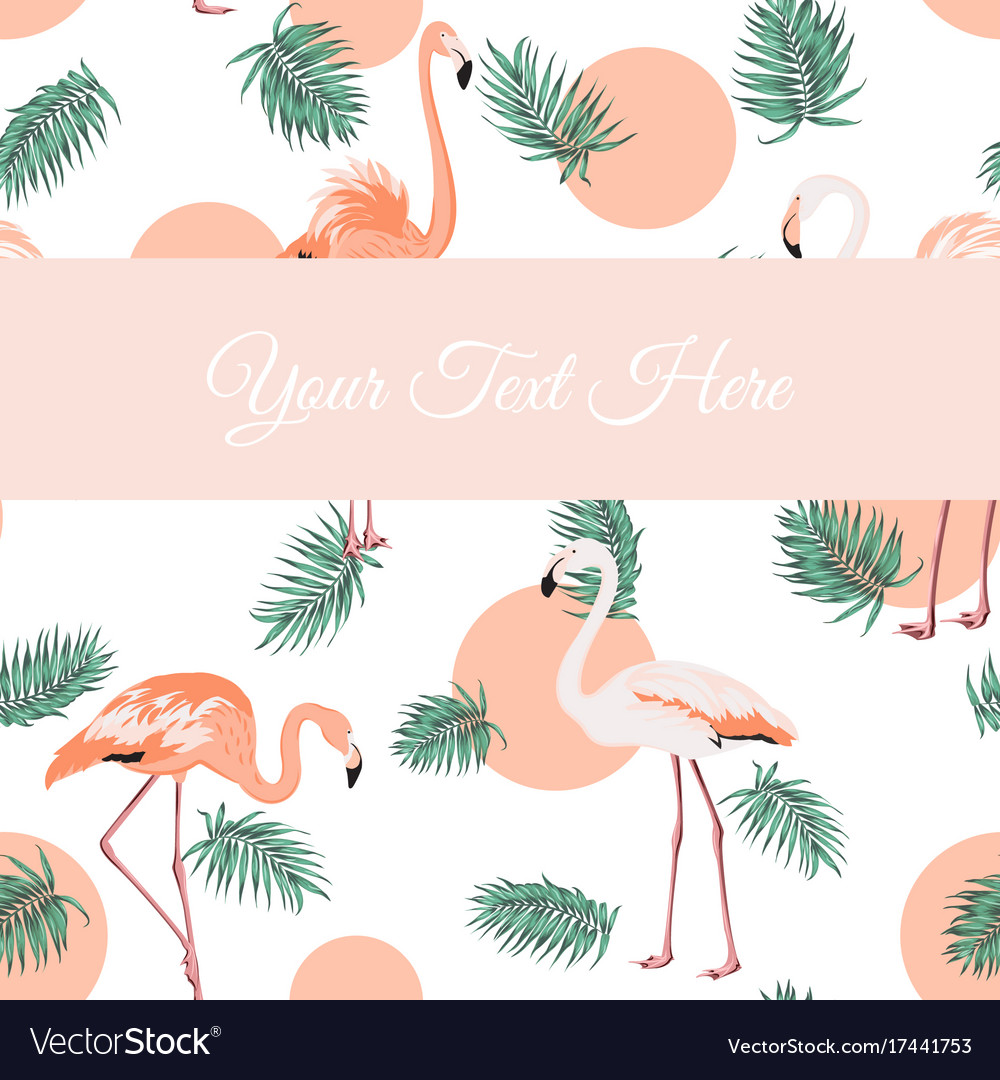 Flamingo birds green leaves sunset card template vector image