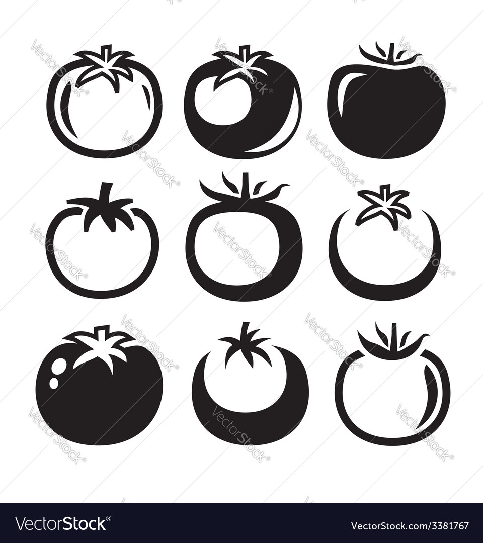 Tomatoes icon vector image