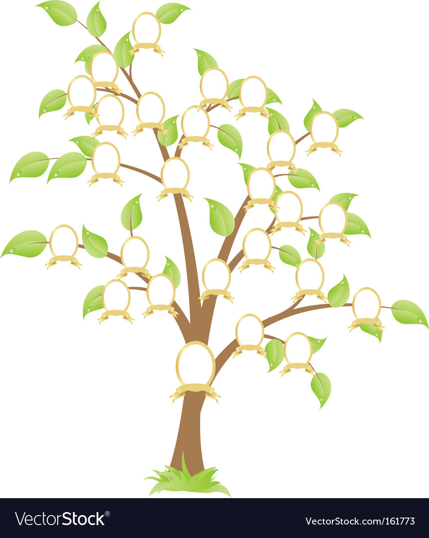 Family tree Vector Image by Nete - Image #161773 - VectorStock