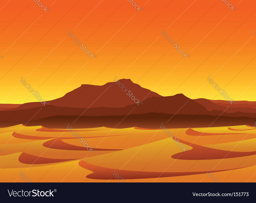 Sunset in desert vector image