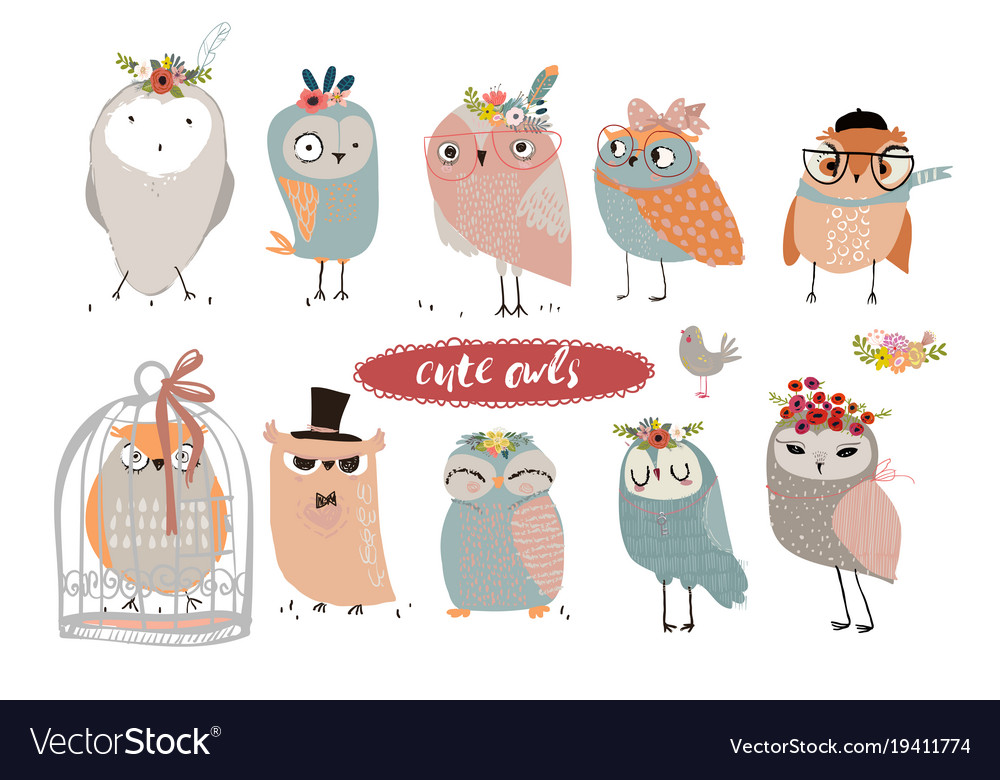Set with cute owls vector image