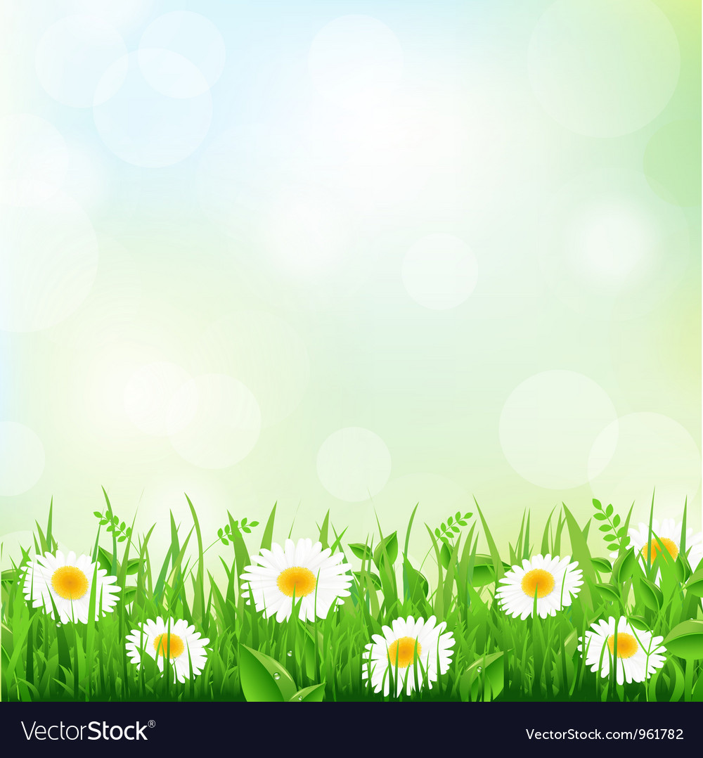 Floral Field vector image