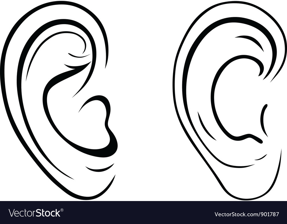 Human ears clipart black and white - photo#39