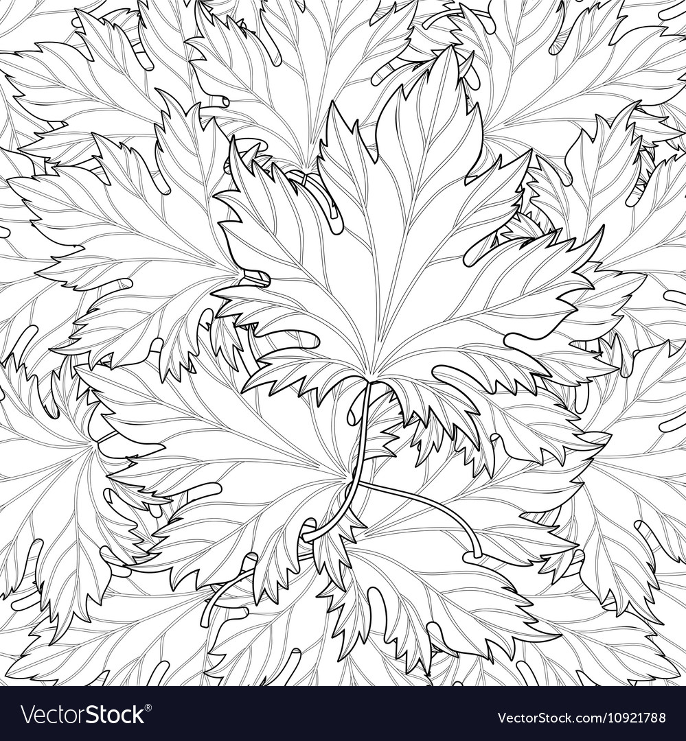 Zentangle stylized autumn fall leaves background vector image
