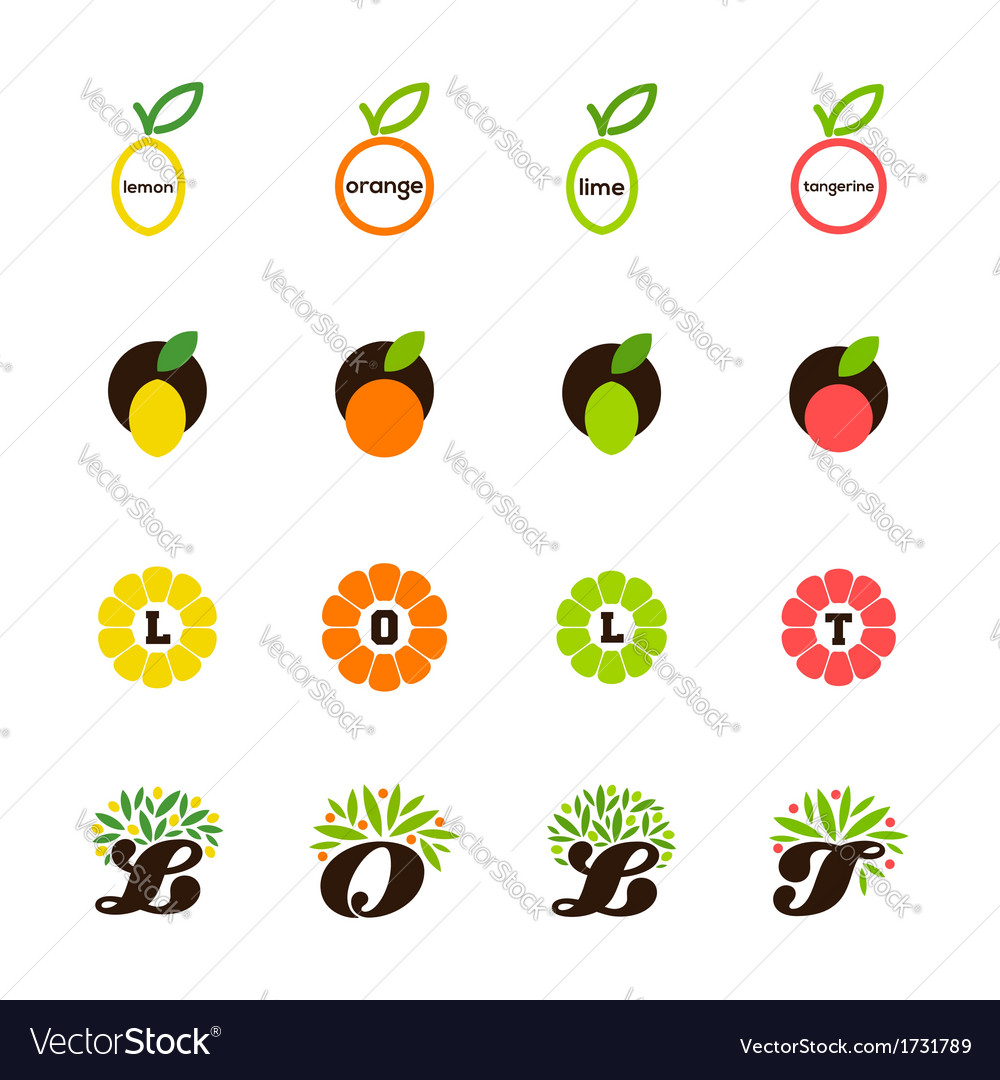 Lemon orange lime tangerine grapefruit vector image