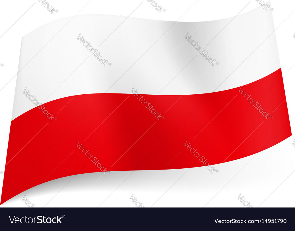 National flag of poland white and red horizontal vector image
