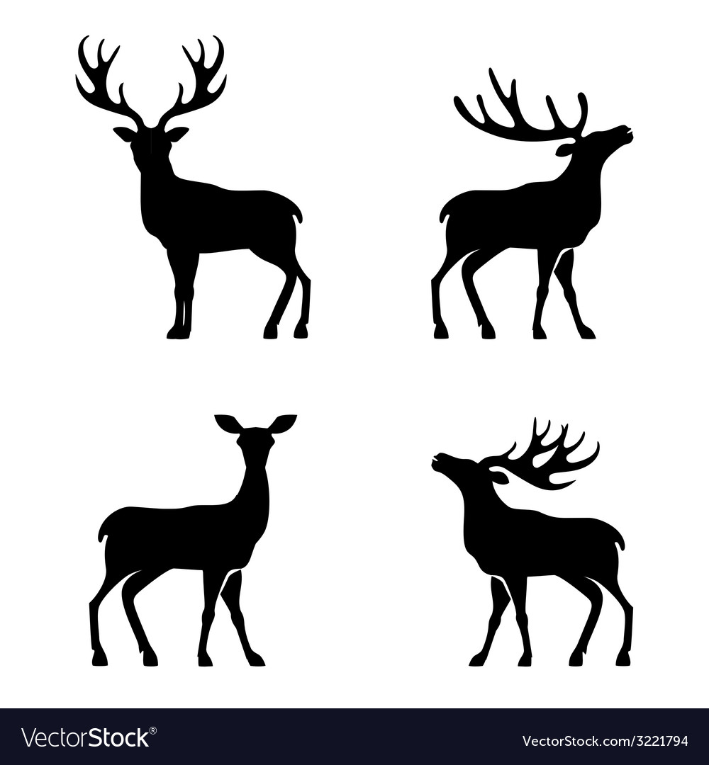 Deer collection - silhouette vector image