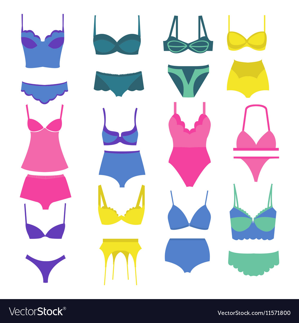 Beautiful fashion lingerie elements vector image