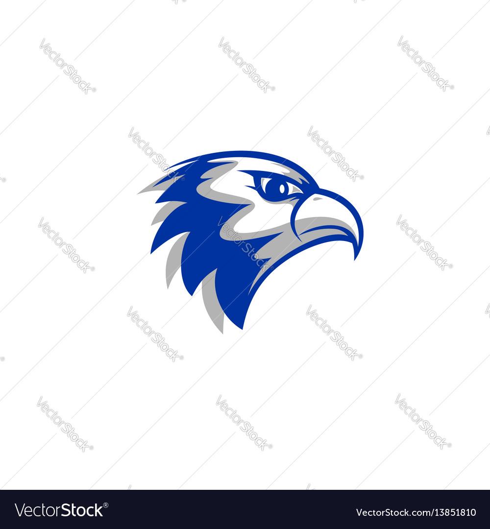 Falcon head vector image