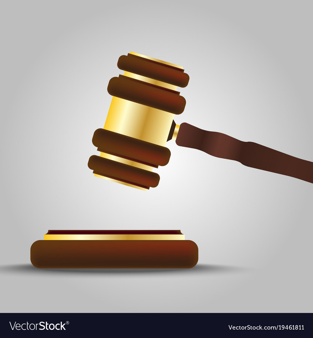 Hammer of the judge vector image