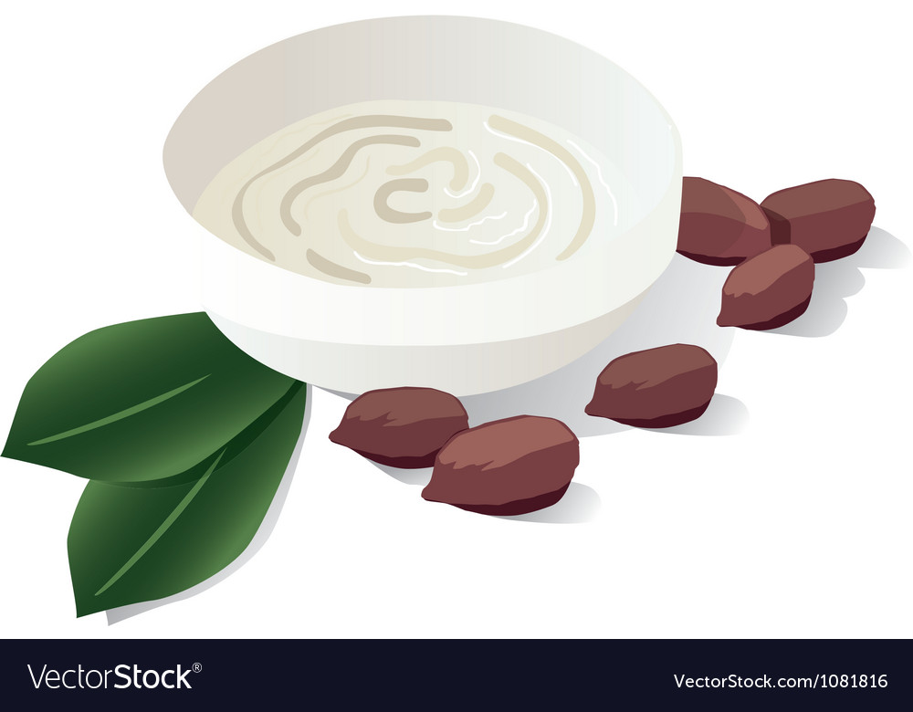 Cocoa butter Vector Image