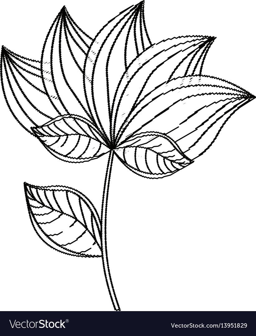 Lotus flower decoration sketch vector image