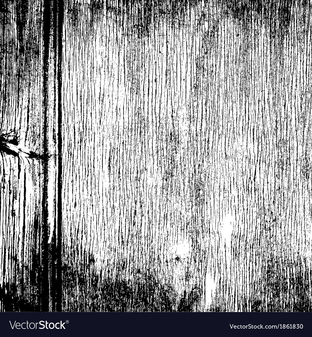 Wood Grainy Texture vector image