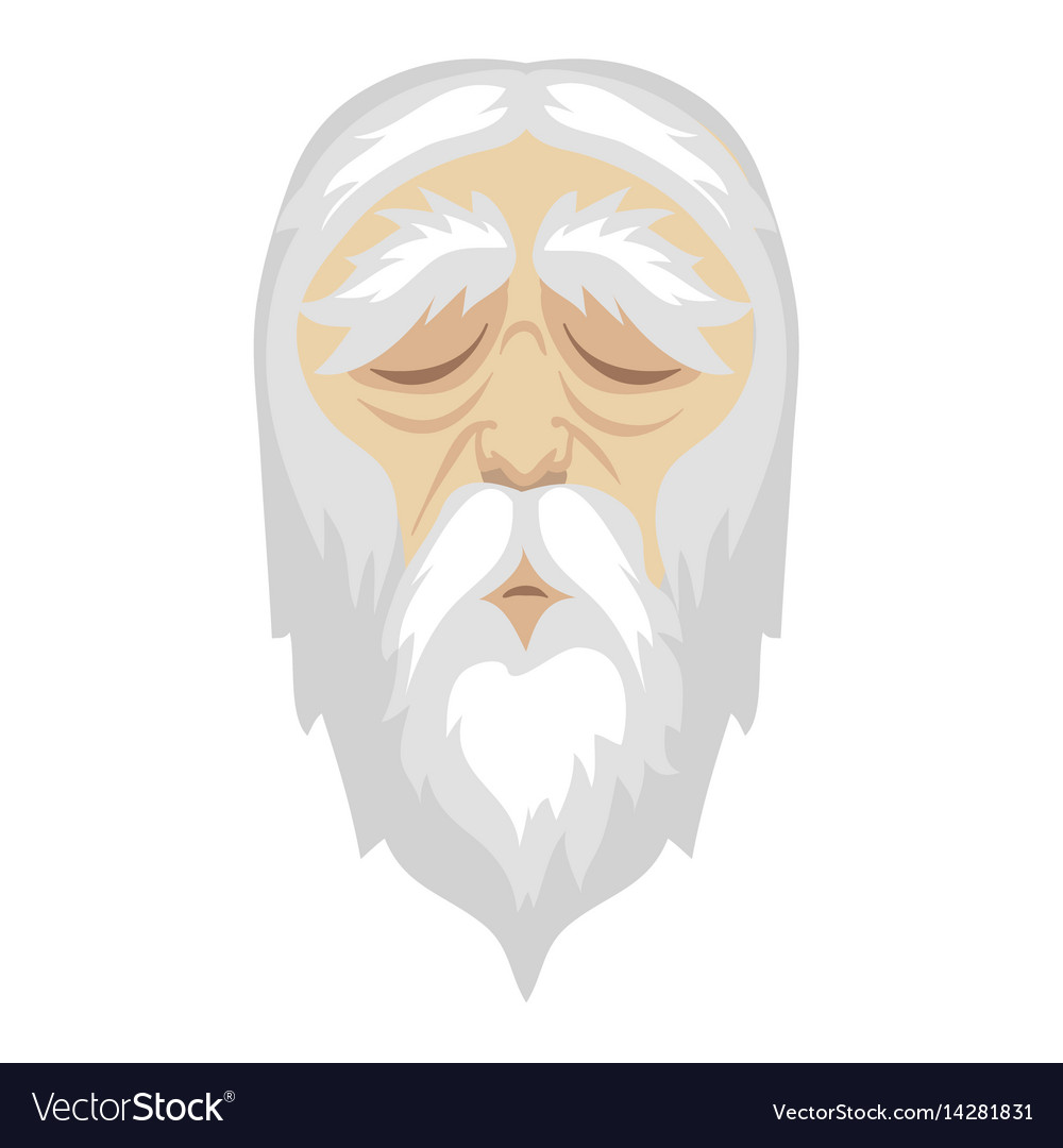 A wise old cartoon man with and a long white vector image