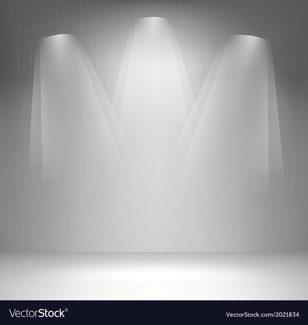 Wall with spotlight vector image