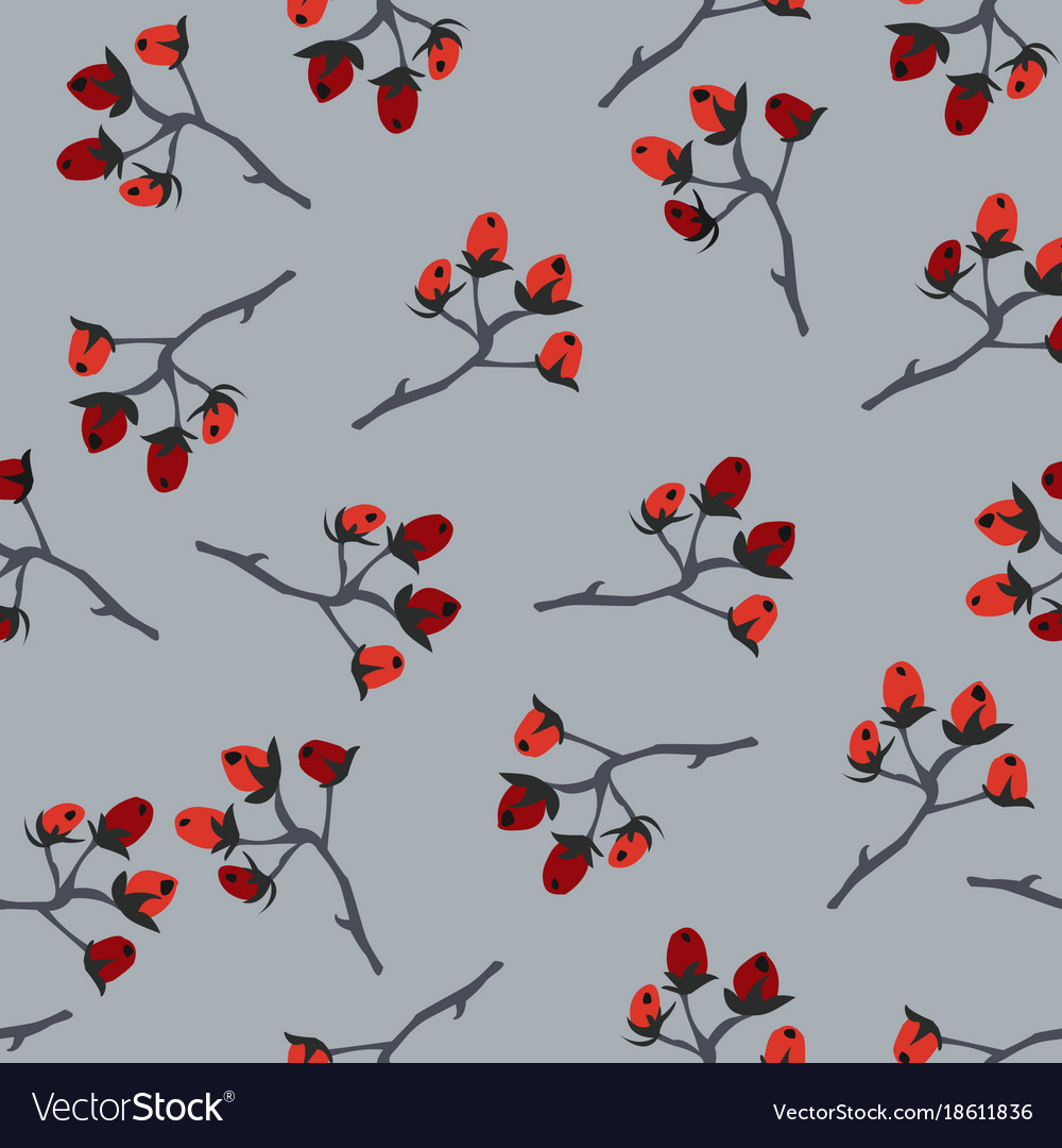 Seamless pattern with berries and spruce branches vector image