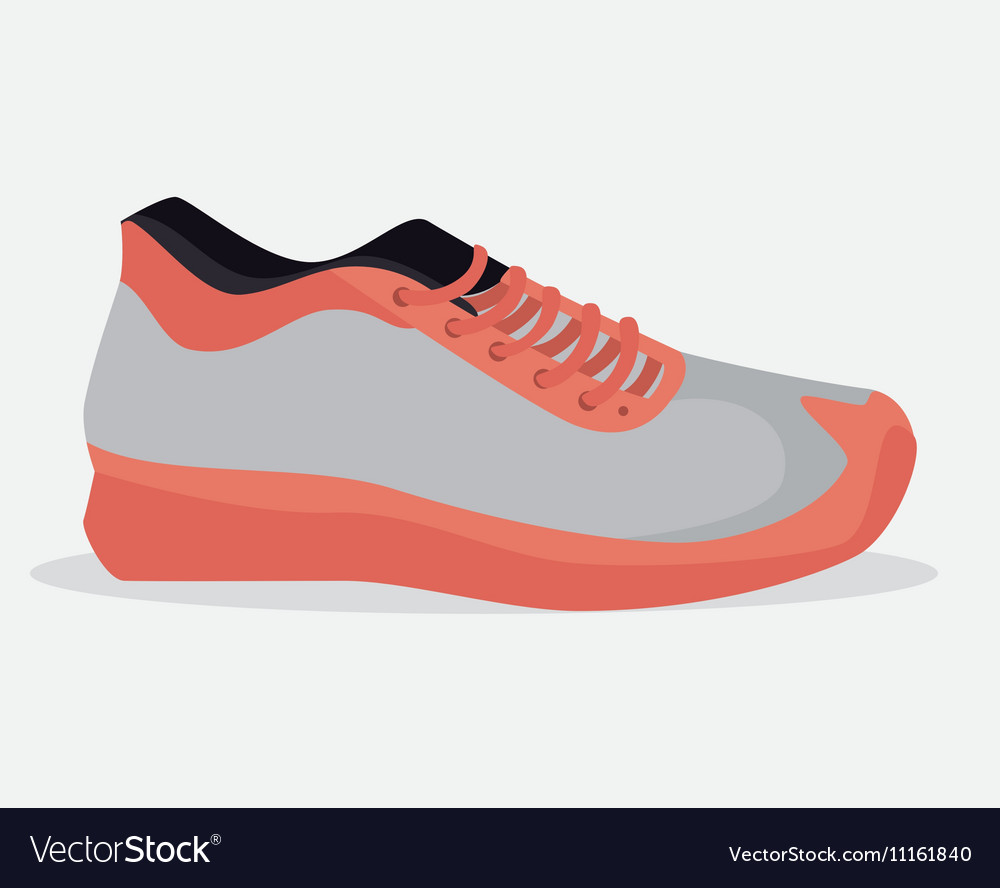 Sneaker sport gym icon vector image
