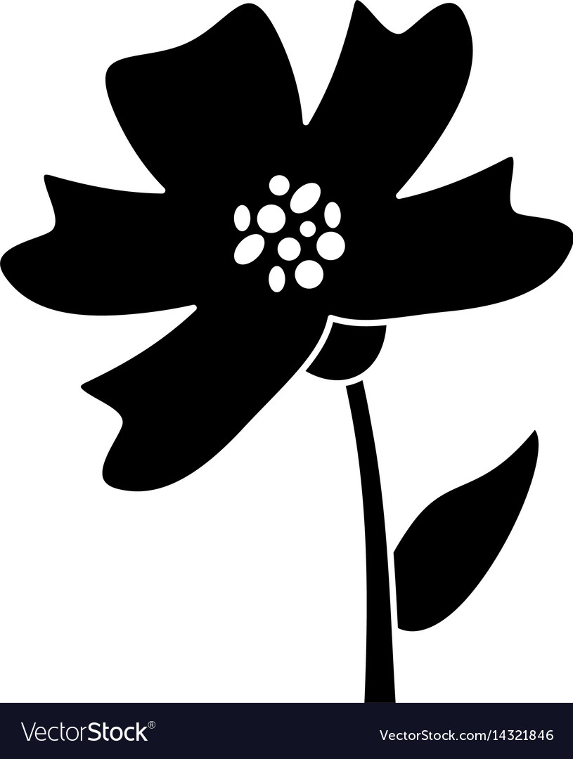 Periwinkle flower decoration silhouette vector image