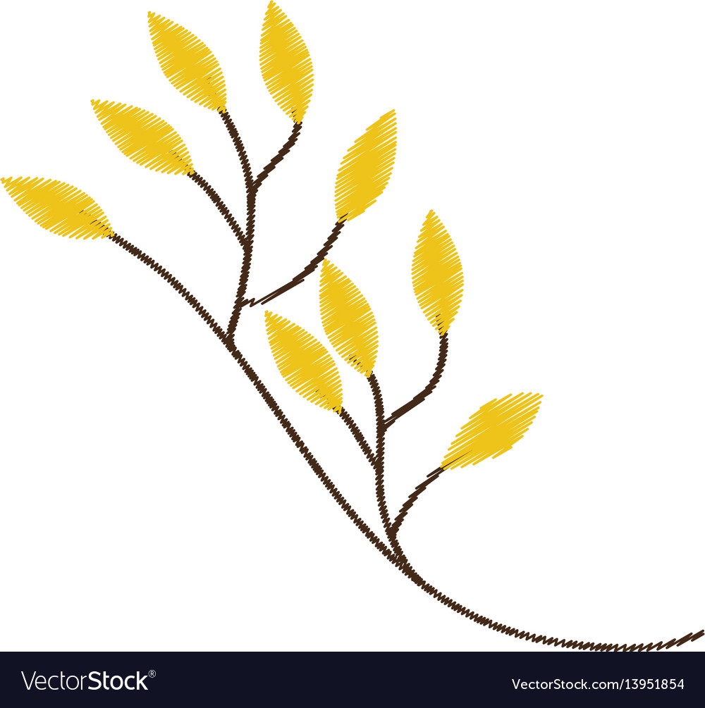 Branch yellow leaves sketch vector image