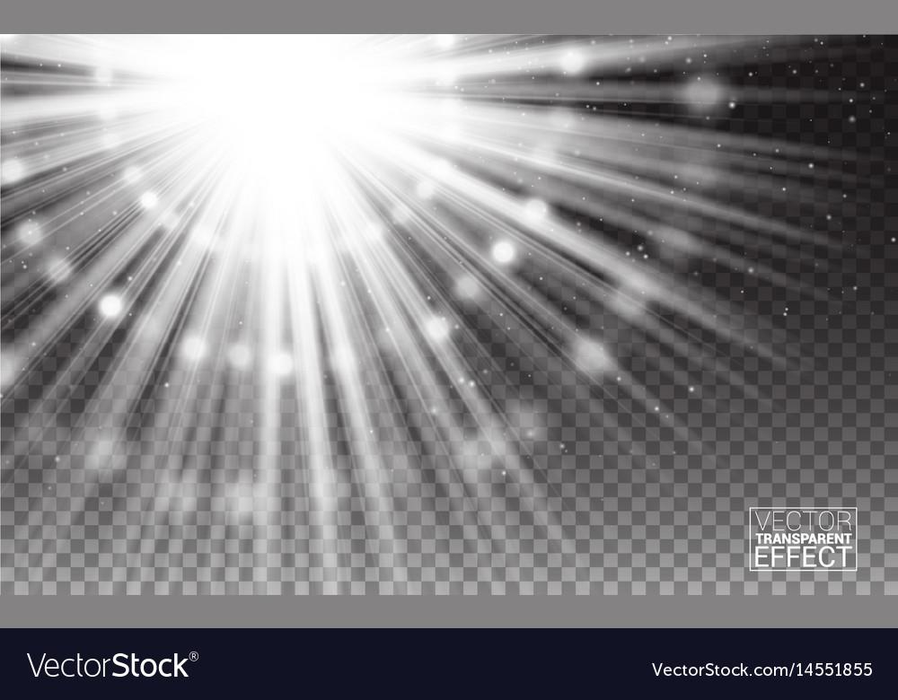 Magic effect white rays light flare vector image